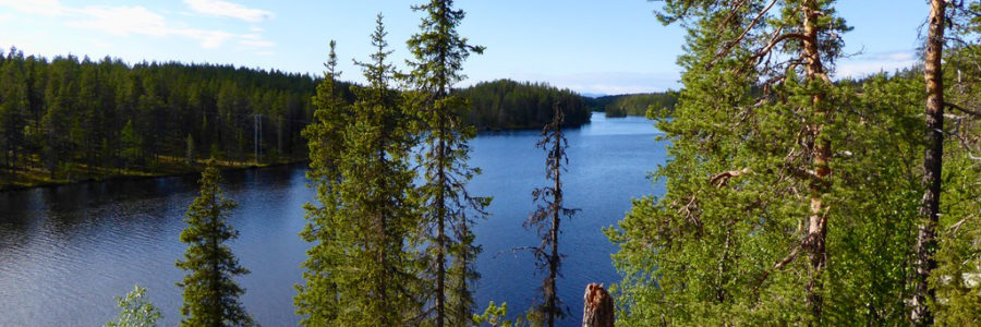 4 things to do in Pallas-Ylläs National Park from our doorstep (that does not cost you a penny!)
