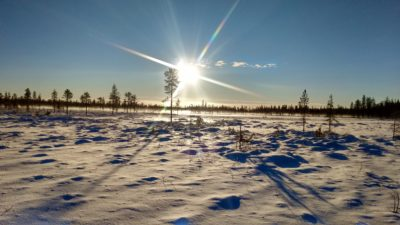 Midday sun in snow